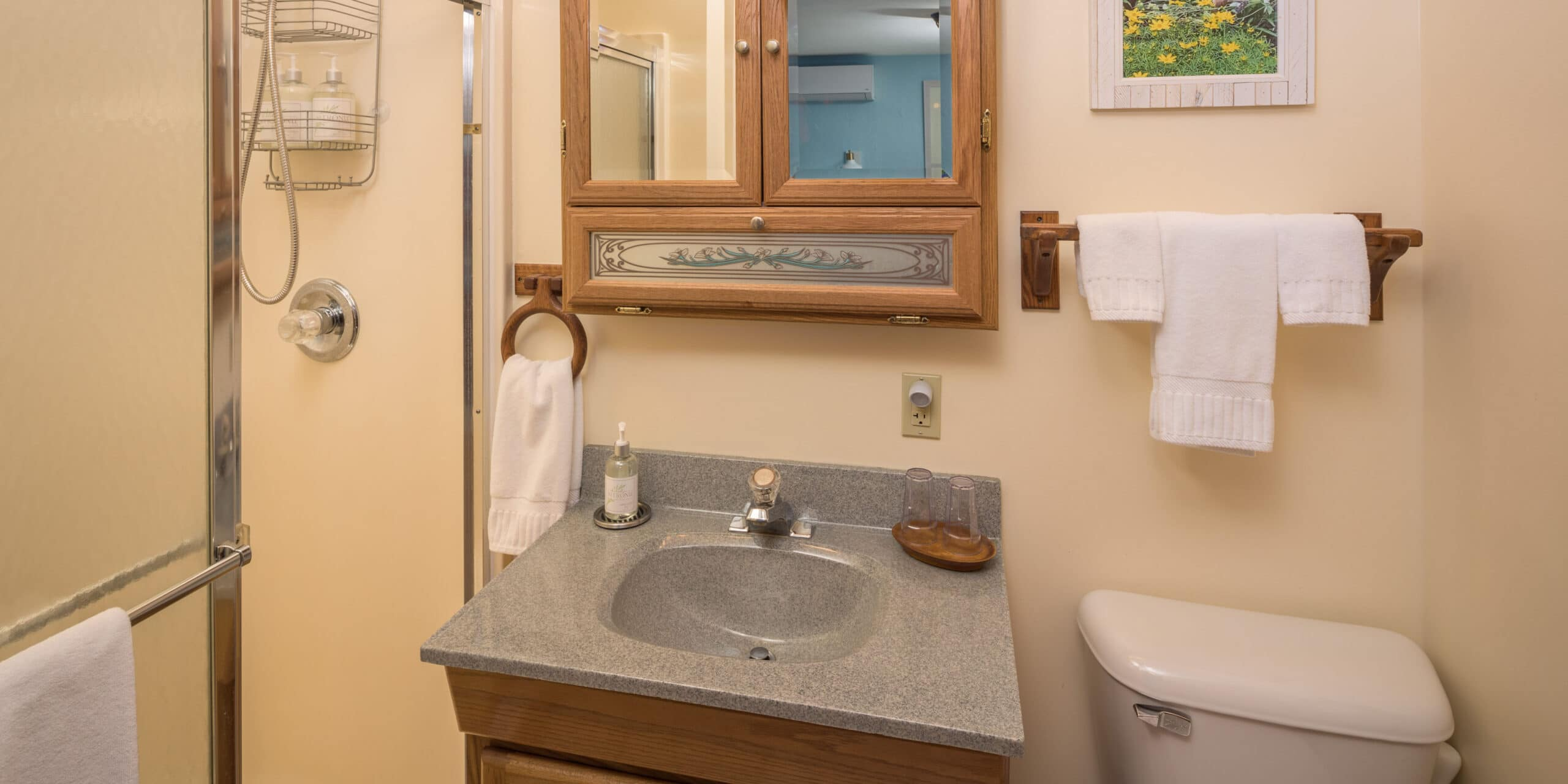 walk-in shower, sink, and toilet
