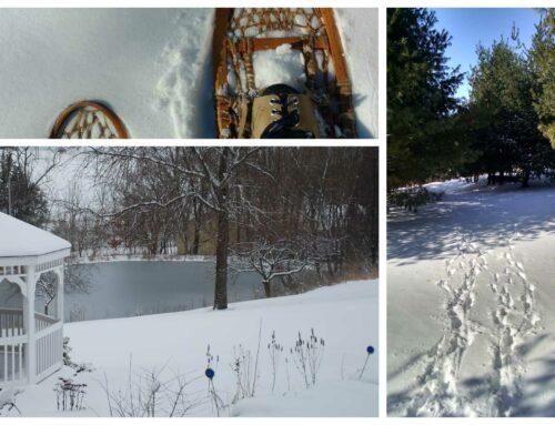 Winter Activities in Galena Illinois