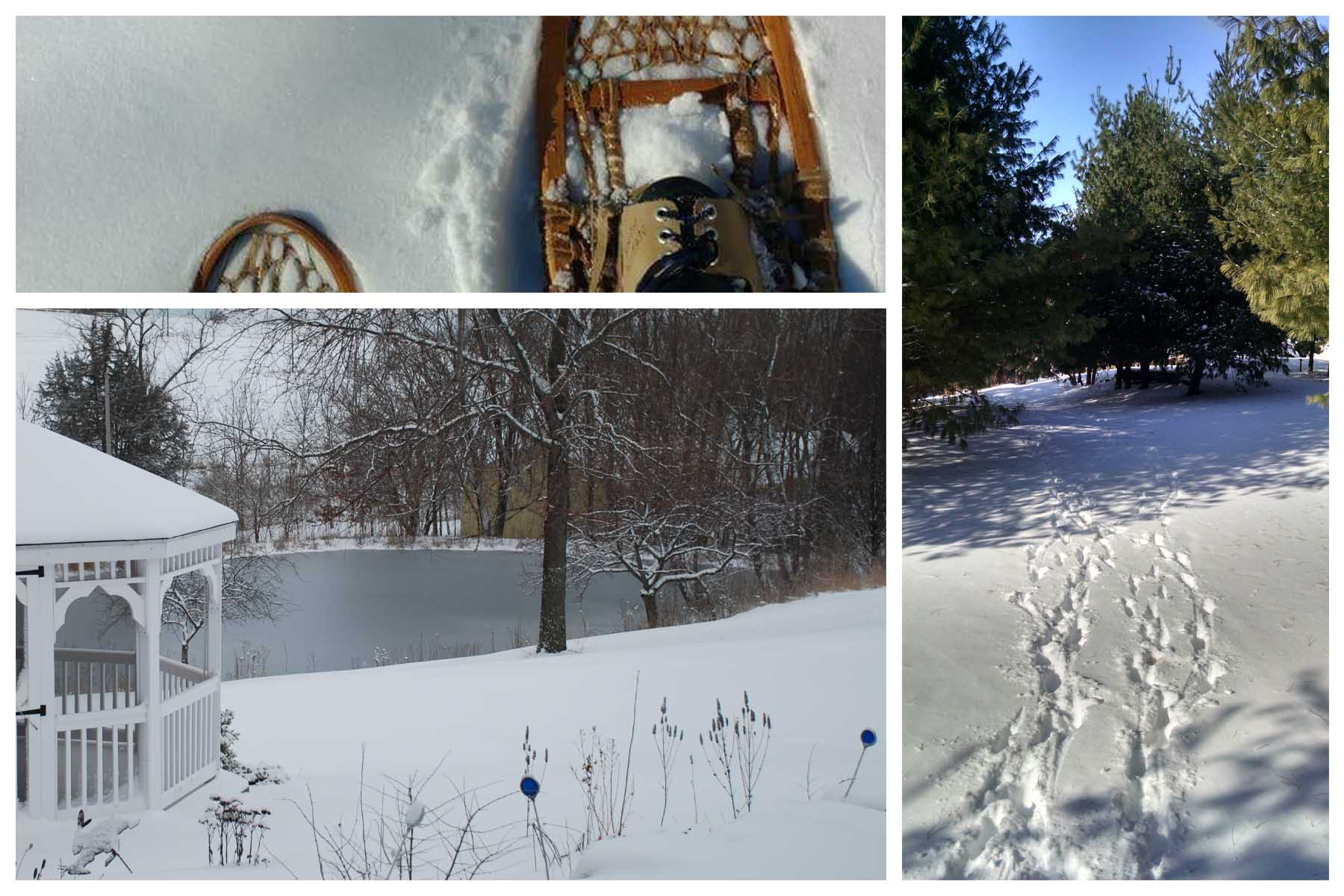 snowshoes and winter scenes at Hawk Valley Retreat